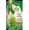 Herbata ziołowa - koper włoski 20 torebek HERBAPOL